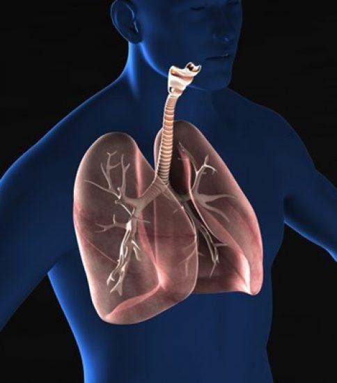 呼吸リハビリテーション講習会